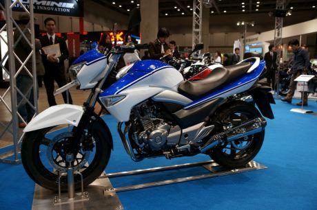 Suzuki Inazuma (GW250)